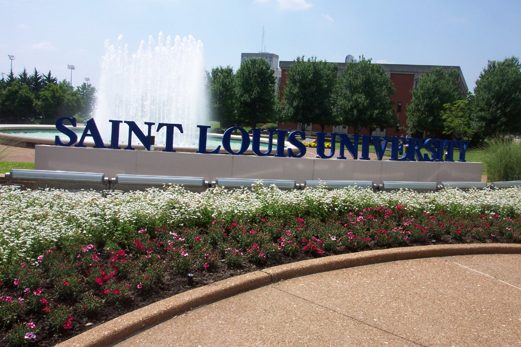 Saint Louis University. Heavenly Scent Cleaning Slingbox App For Ipad. Mortgage Protection Ireland Seo Blog Network. Byrne Criminal Justice Innovation Program. Low Interest Business Credit Cards. Laparoscopic Back Surgery Canada Pest Control. Masters Degree In Human Resources. Hubbardton Forge Lights Park School Brookline. North Carolina Beach Rental Homes