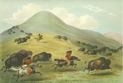Buffalo Hunt, Chase by George Catlin
